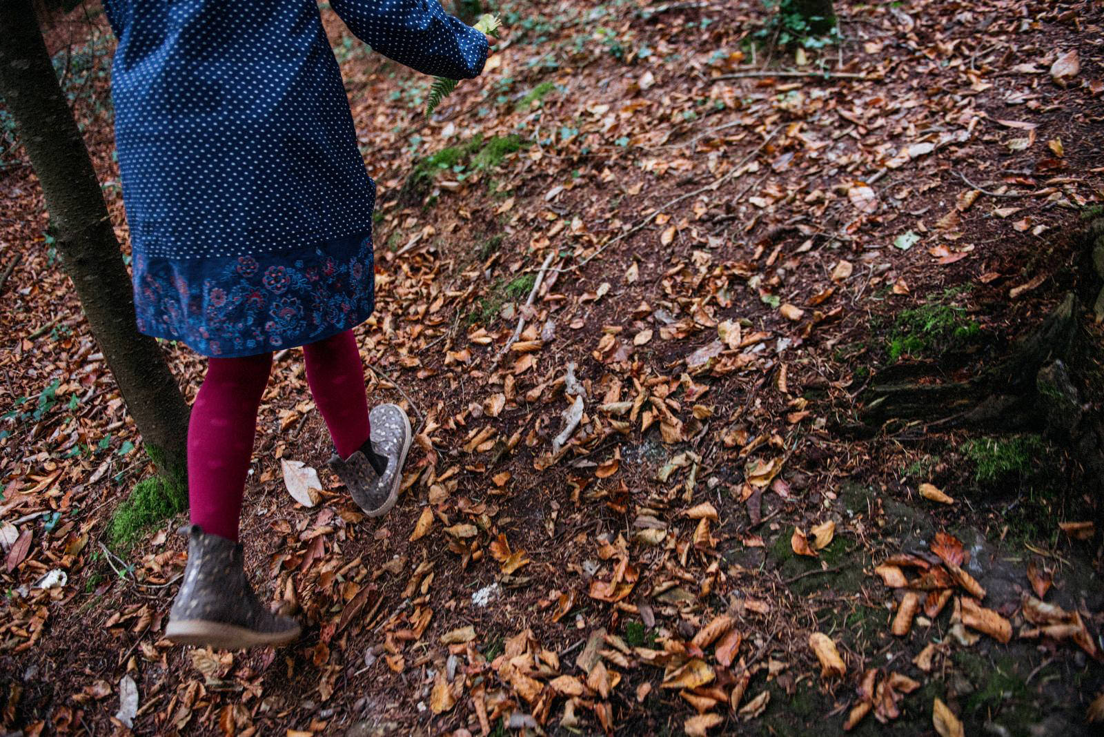 feet in the woods